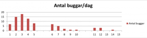 buggarPerDag