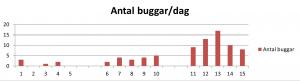 buggarPerDag1